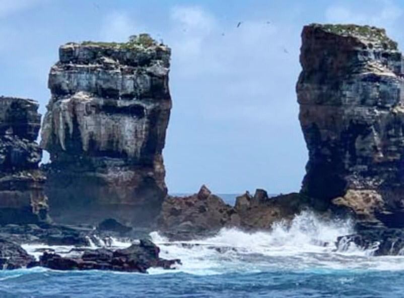 Galapagos arche Darwin 2021